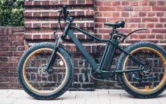 E-Fatbike Vergleich: Das Lifestyle-Bike zum cruisen
