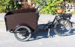 E-Lastenrad Vergleich: E-Bike mit Kofferraum