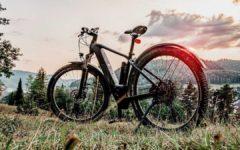 E-Mountainbike Vergleich: Maximale Dynamik mit E-MTBs