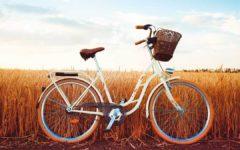 City E-Bike Vergleich [2021]: Mobilität in der Stadt